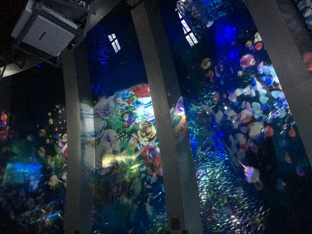 フロントスタッフの日常*水族館🐠