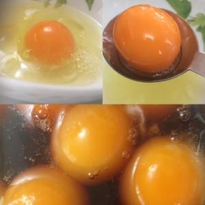 フロントスタッフの日常*冷凍卵にチャレンジ!!②
