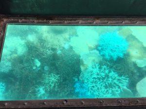 フロントスタッフの日常 沖縄の旅編⑥です☀
